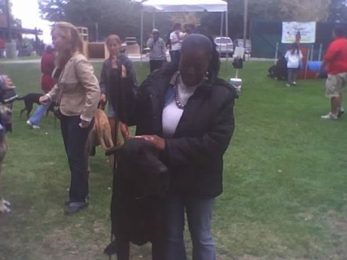 Crsyty with Tugs (*2008) Dogshow!